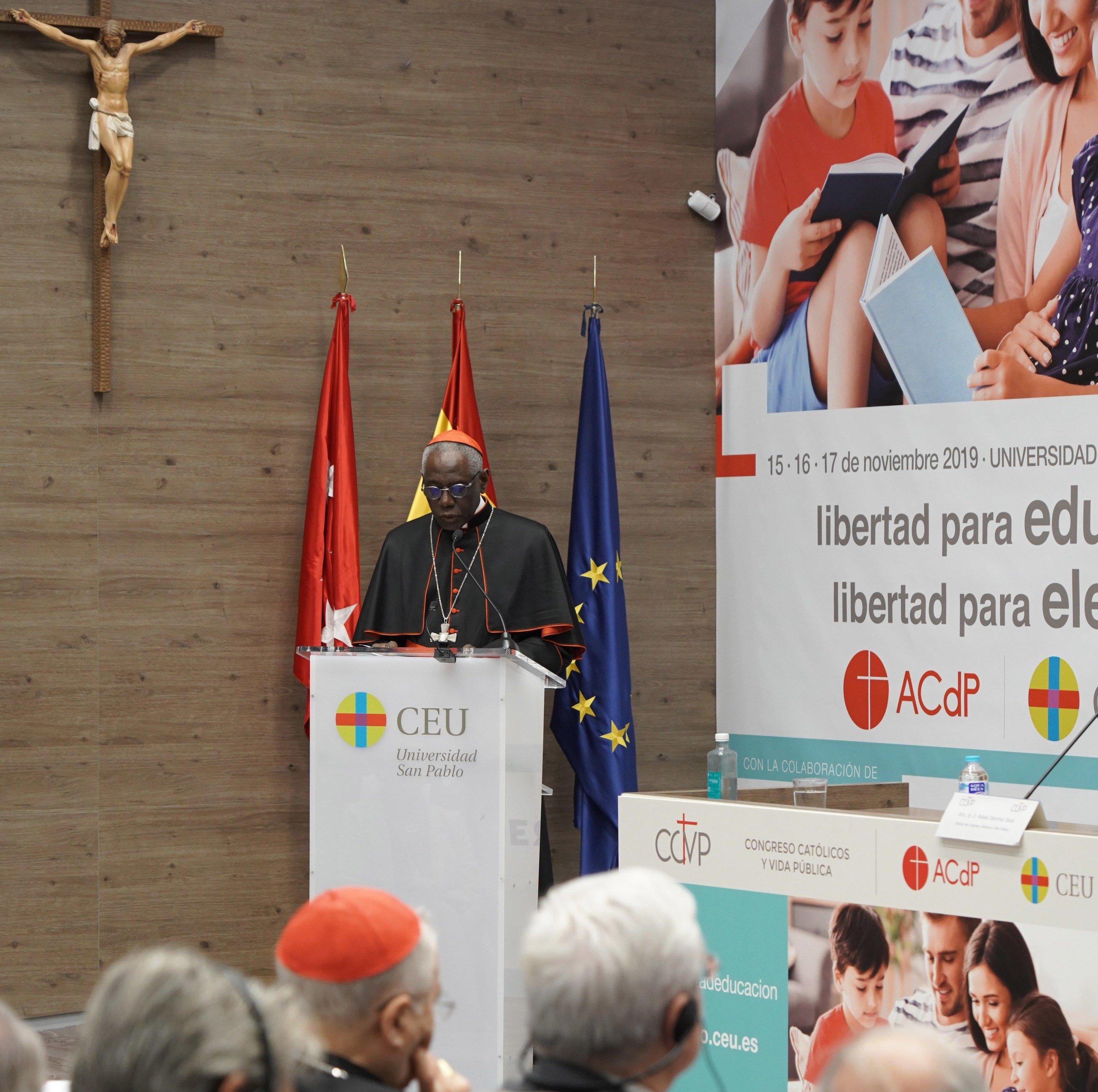El cardenal Sarah y el medioambiente espiritual - María Solano Altaba - El Confidencial Digital